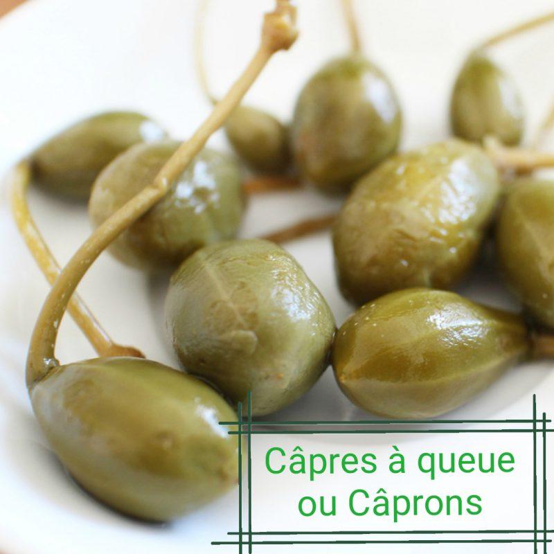 Câpres à queue ou Câprons Produits Italiens
